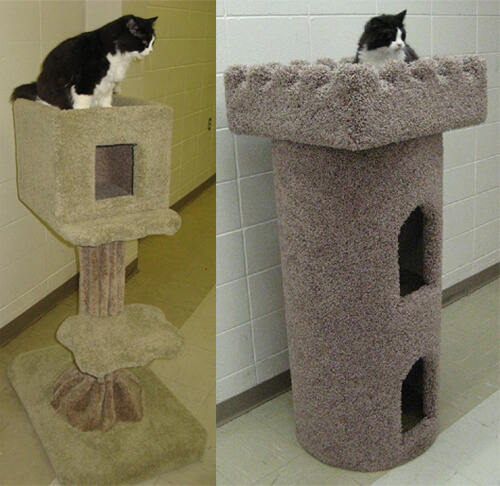 CATMAN Furniture will be selling items like these at the Edmonton International Cat Festival!