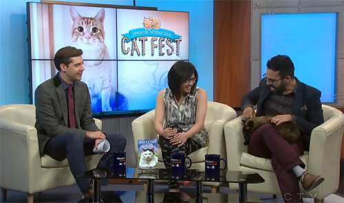 Having fun with Omar's cat Orwell on CTV Morning Live!