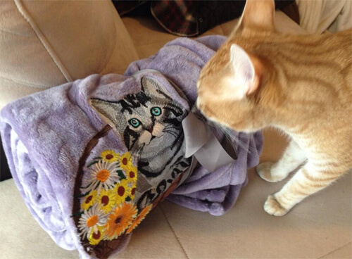 Loki the Cat checking out MikaSu Designs - cat blanket.