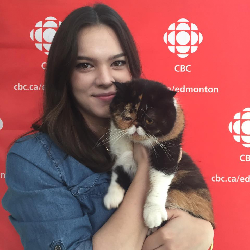 CBC Edmonton - Pudge the Cat - Cat Festival