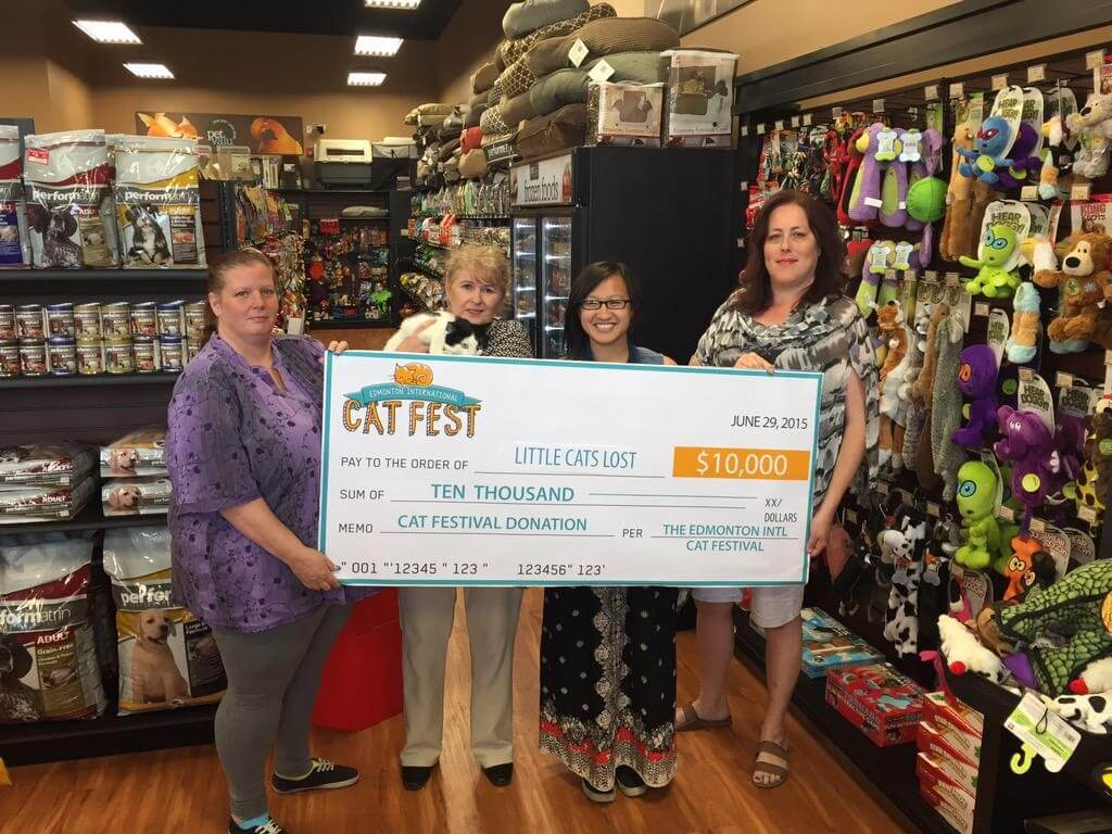 Edmonton International Cat Festival cheque presentation with Little Cats Lost.