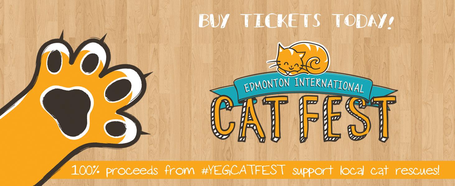 Cats Edmonton