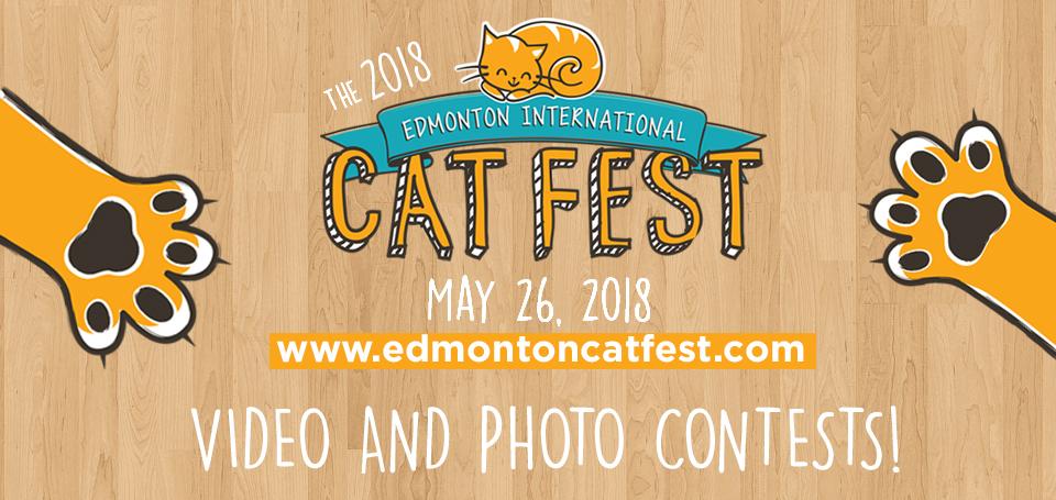 Video Photo Contests