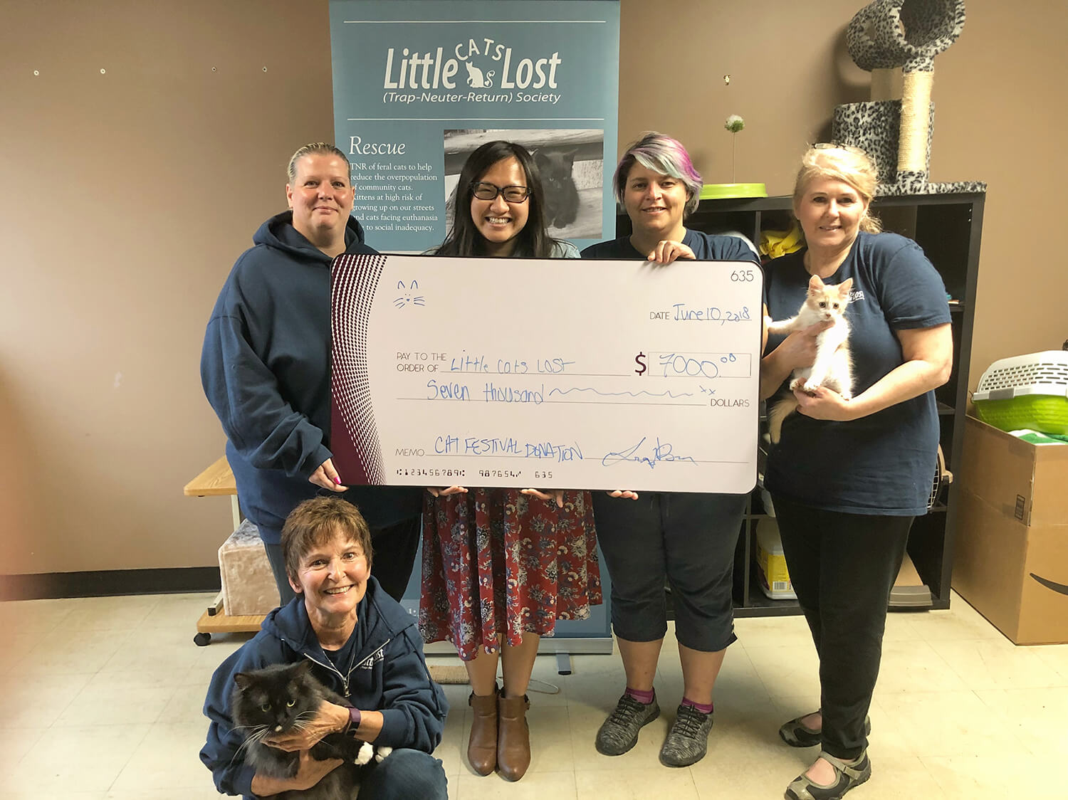 Edmonton International Cat Festival - Little Cats Lost Donation